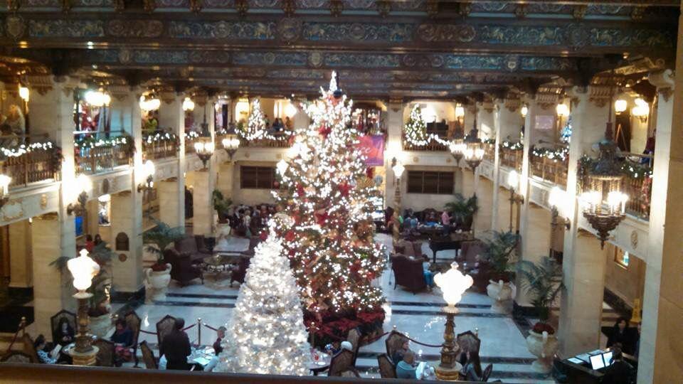 Christmas trees at the Davenport