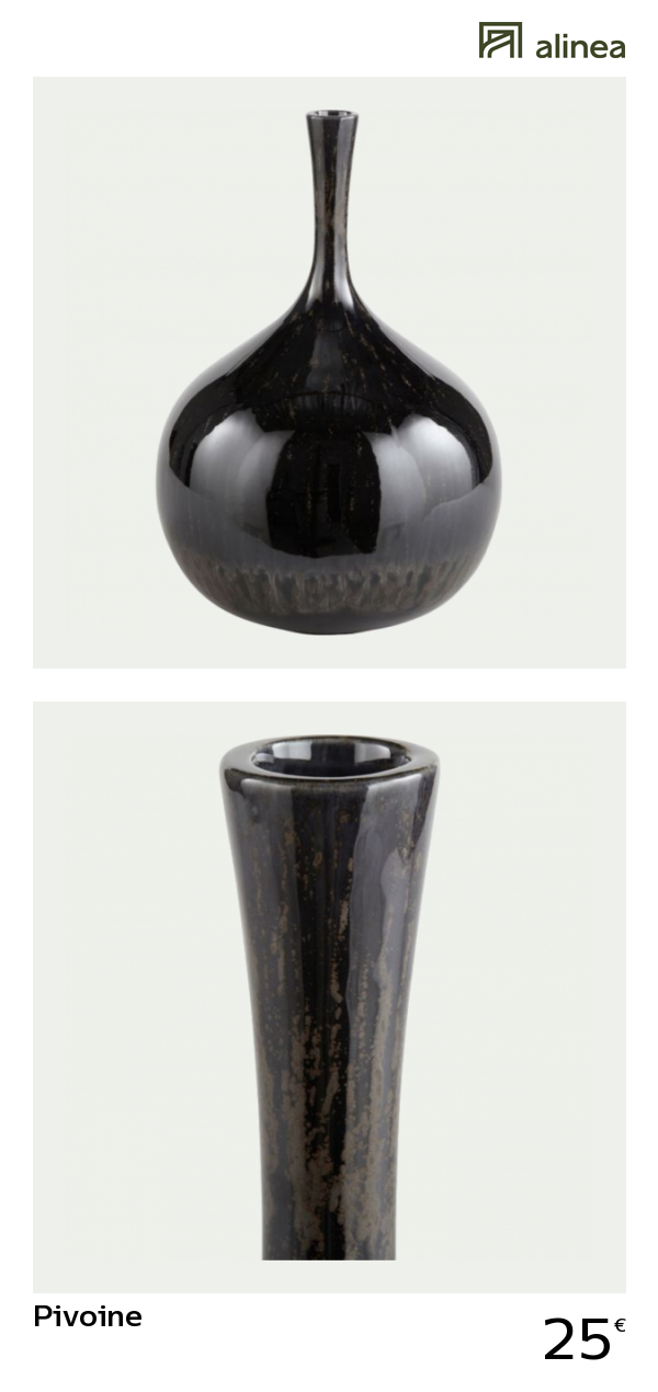alinea pivoine vase en ceramique noir
