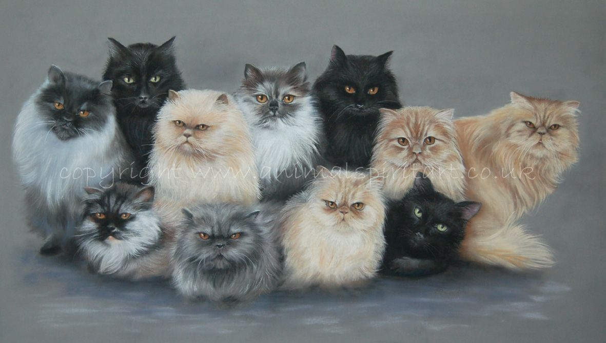 Commission of 11 cats done from very old photos