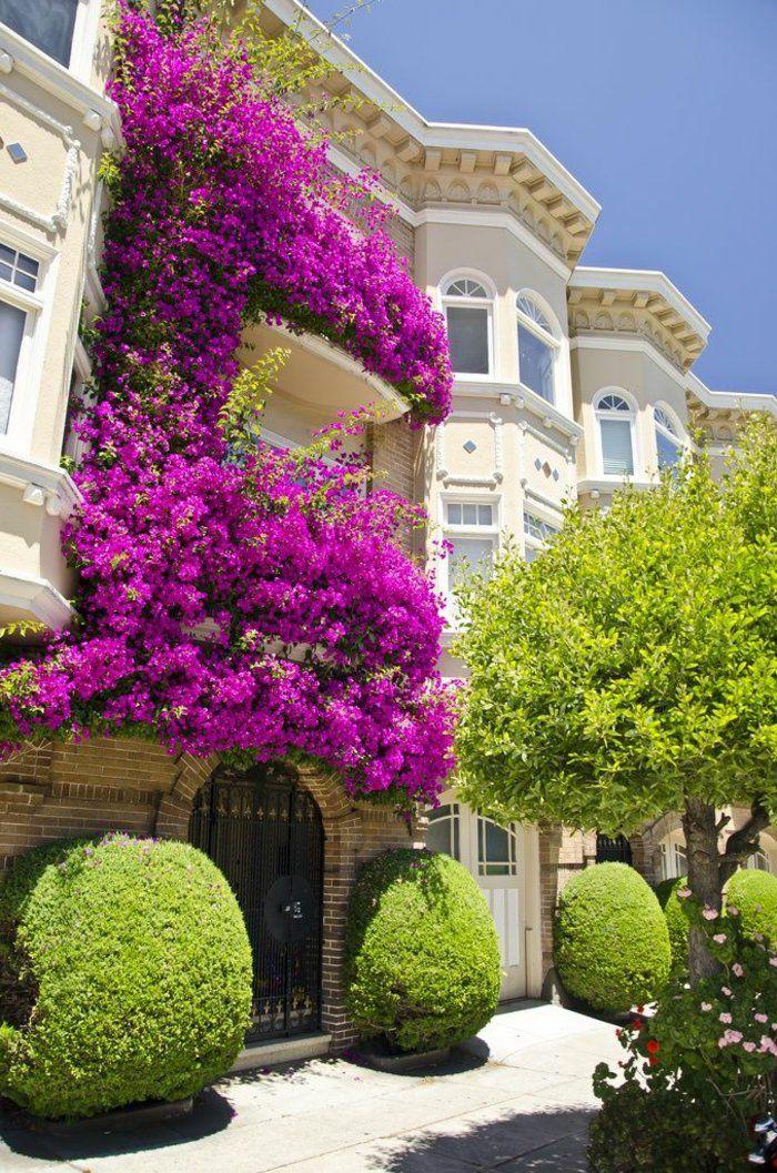 Comment avoir un balcon fleuri id es en 50 photos couleur violet balcons et fleuri - Comment etancher un balcon ...