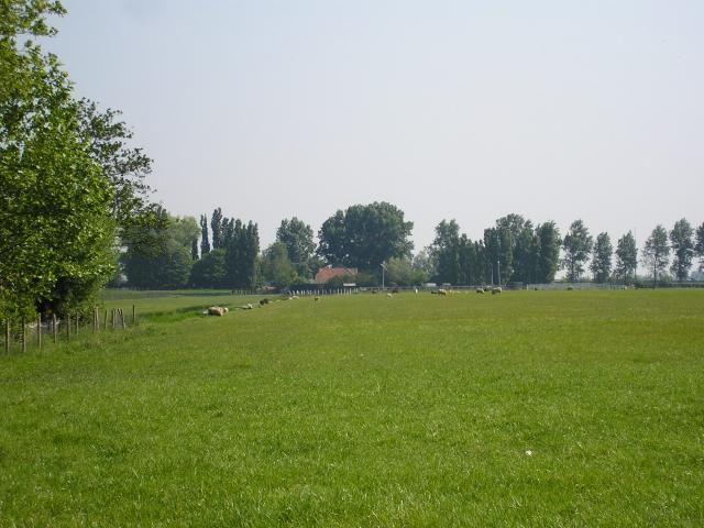 Weidse weilandjes