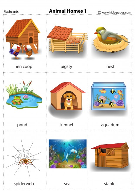 Animals And Their Homes Worksheet For Kindergarten