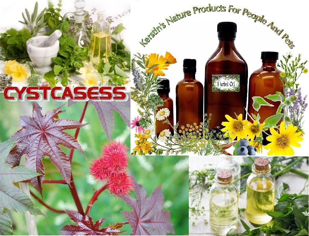 CYST CAS ESS CYSTCASESS Natural Reduce & Resolve Cysts
