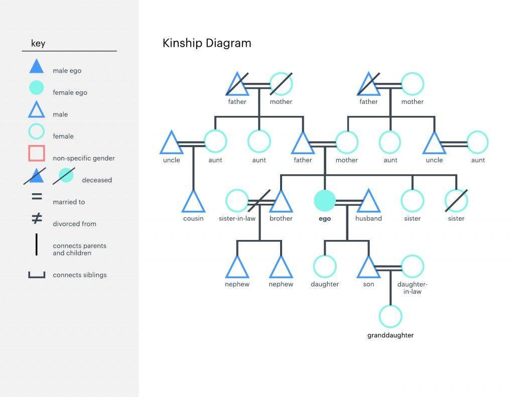 19 Best Sample Of Kinship Diagram Design Ideas