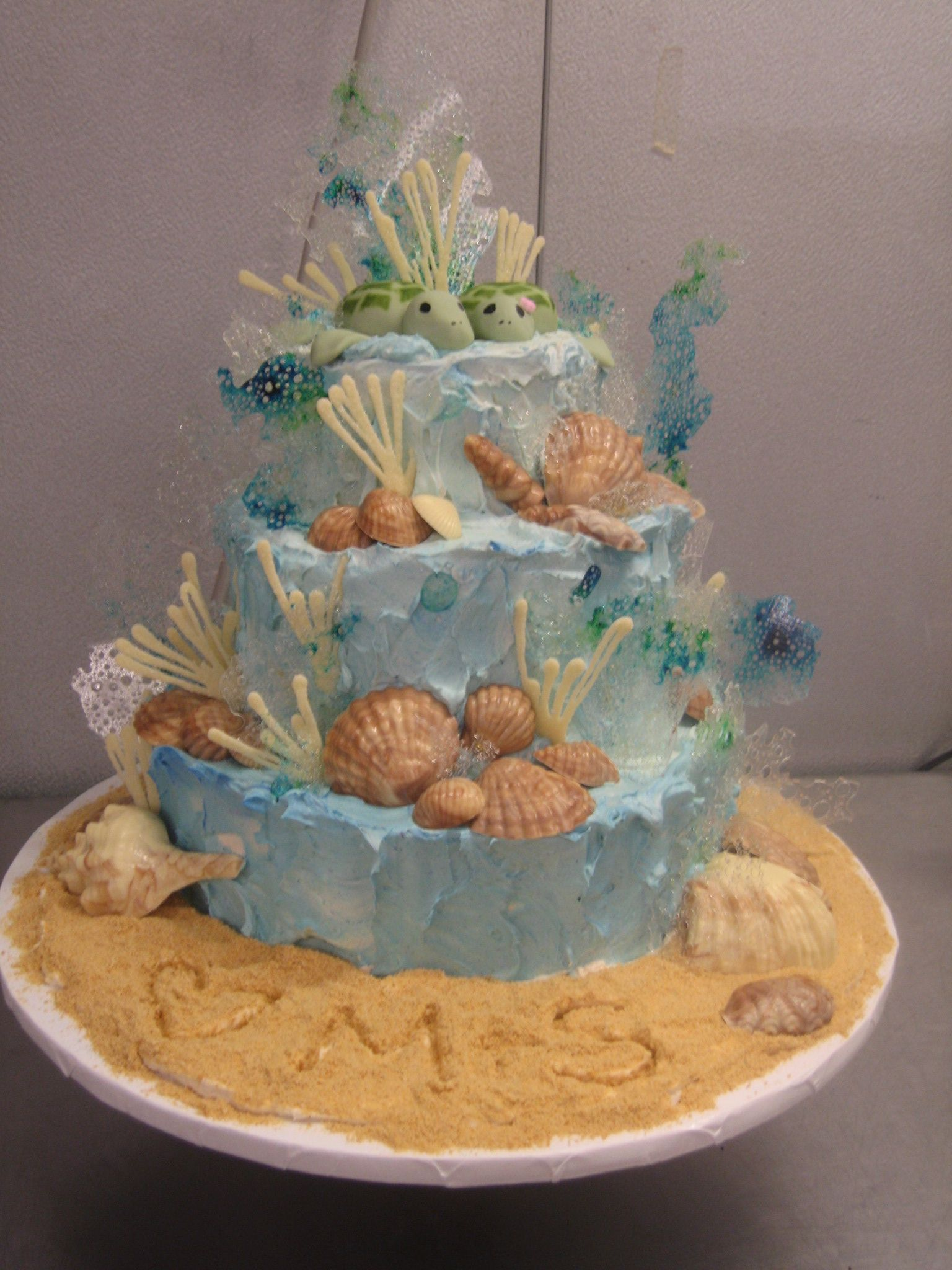 Sea Turtles Cake