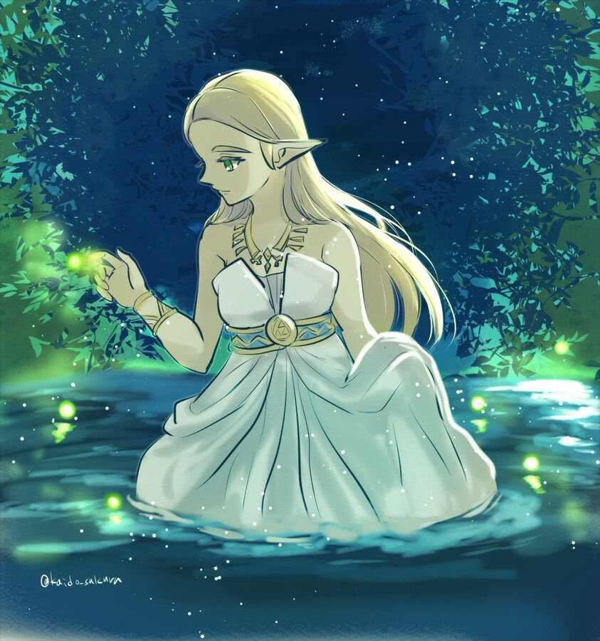 Pin By L Yukka Whitted On Zelda Botw Zelda Princesse Zelda