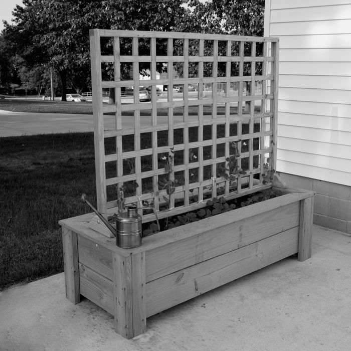 A Trellis To Finish The Box Raised Bed Garden Design 640 x 480