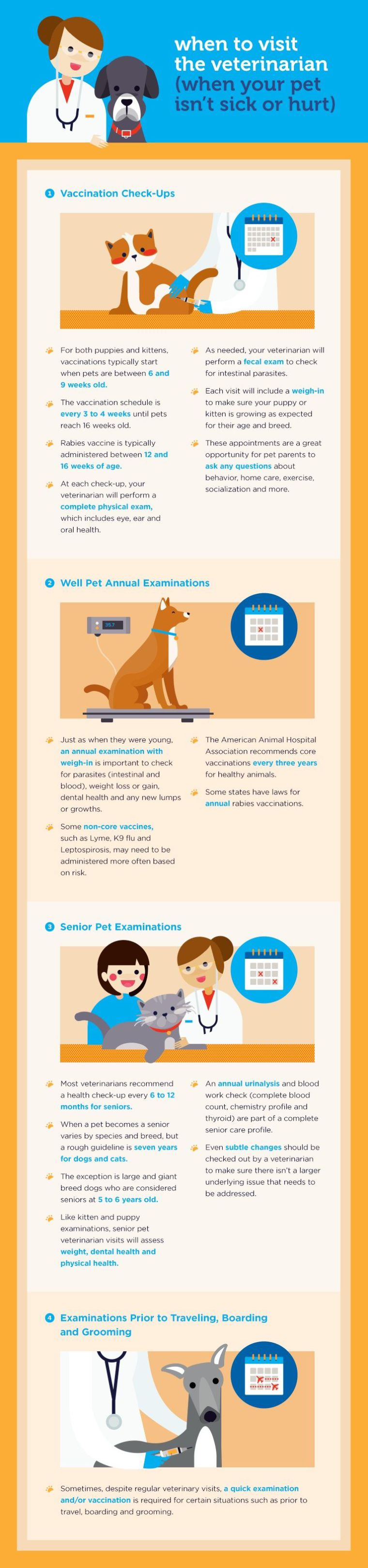 Healthy From Head to Tail When to Visit the Vet Healthy