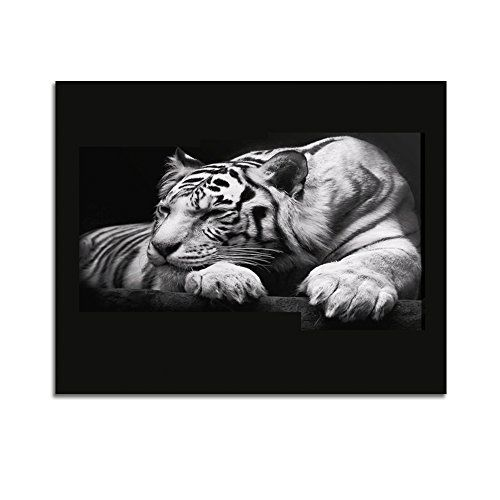 Bengal Tiger Wildlife Canvas Wall Art Picture Print