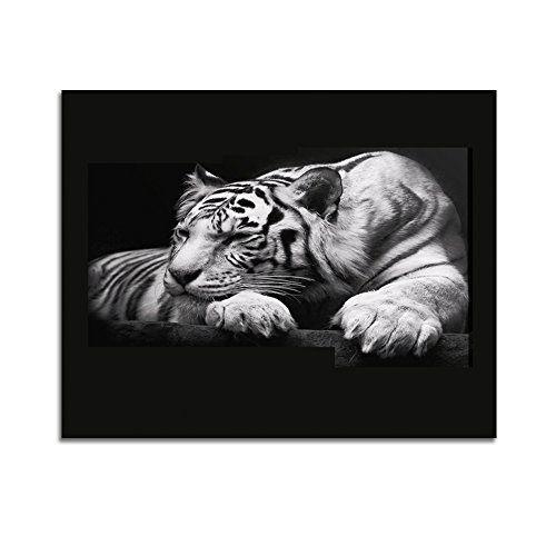 Shuaxin 1 Panel Modern Wildlife Wall Painting Animal Black And
