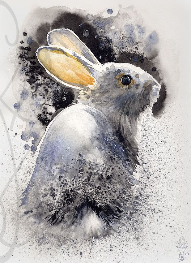 Aquarelle Lapin Bing Images Bunny Watercolor Animal Art