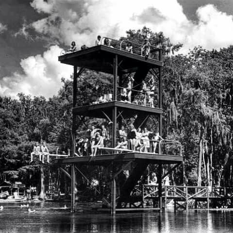 Wakulla Springs The Old Dive Tower Visit Florida Florida Springs Florida