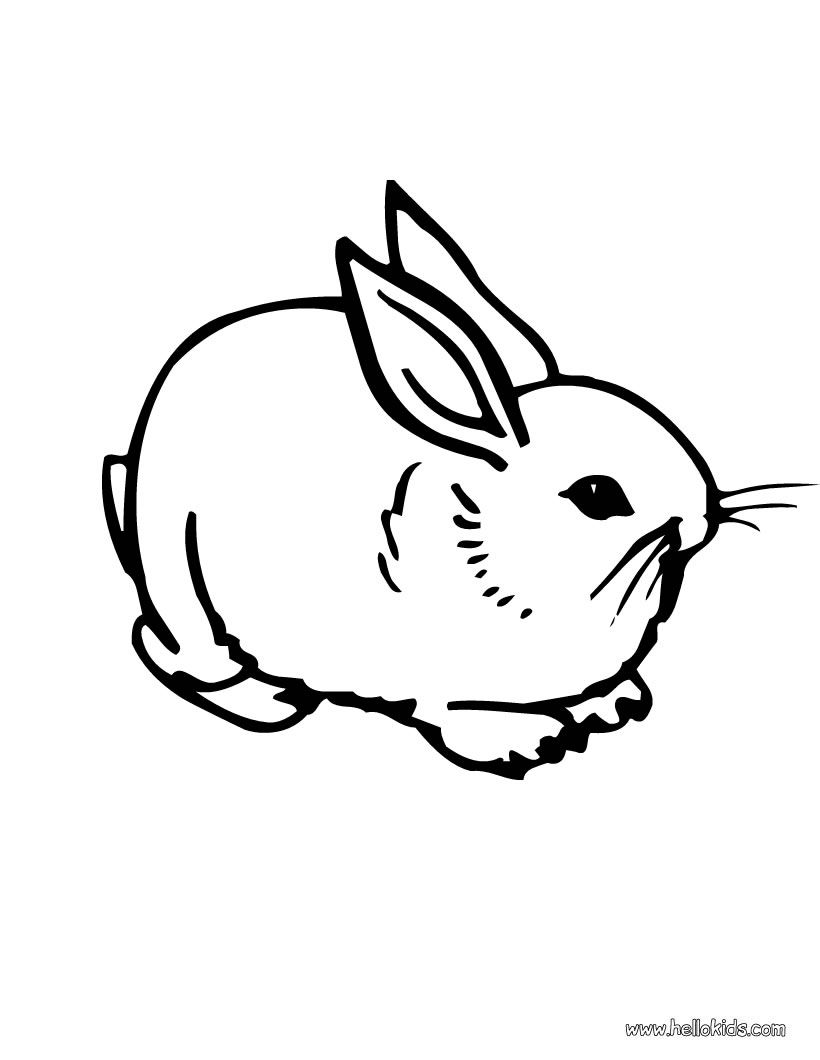 Hippity Hop Bunny Coloring Pages Cute Coloring Pages Animal Coloring Pages
