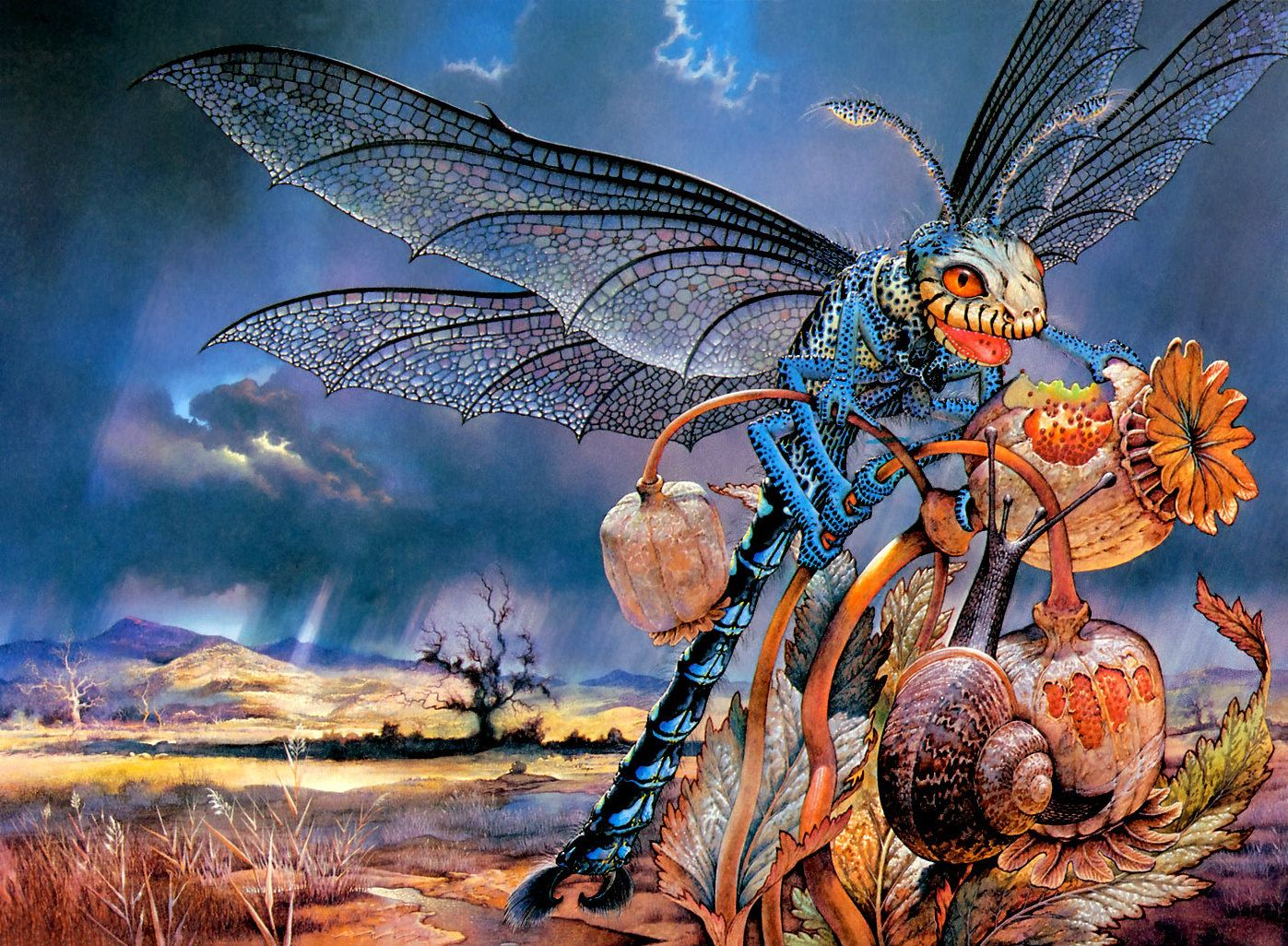 patrick woodroffe - the oriental dragon fly