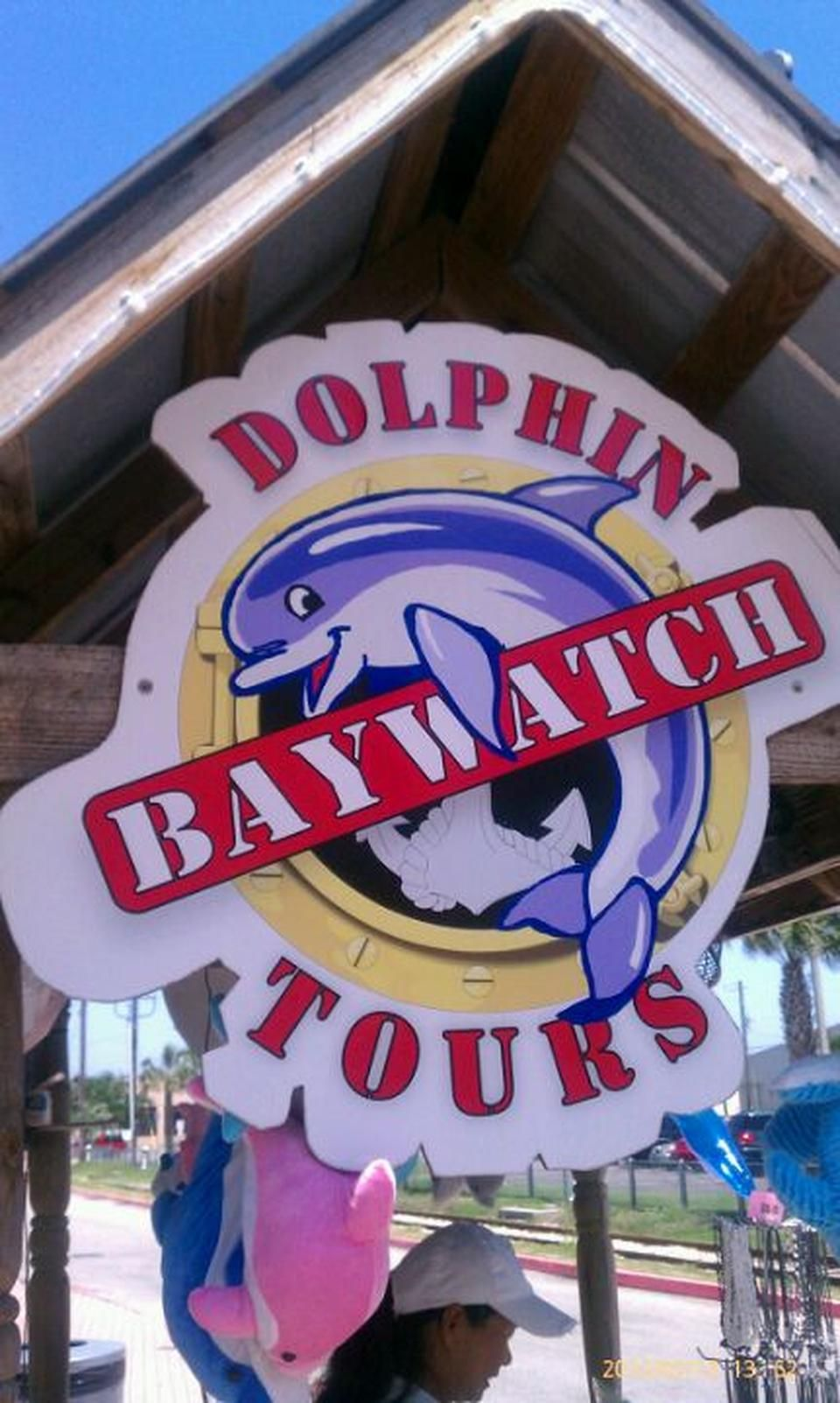 Baywatch Dolphin Tours Galveston Tx Texas Pinterest