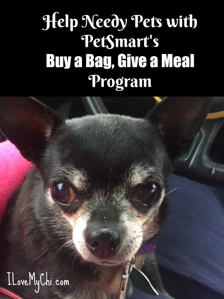 Help Needy Pets With Petsmart S Buy A Bag Give A Meal Program Dogs Animals Chihuahua