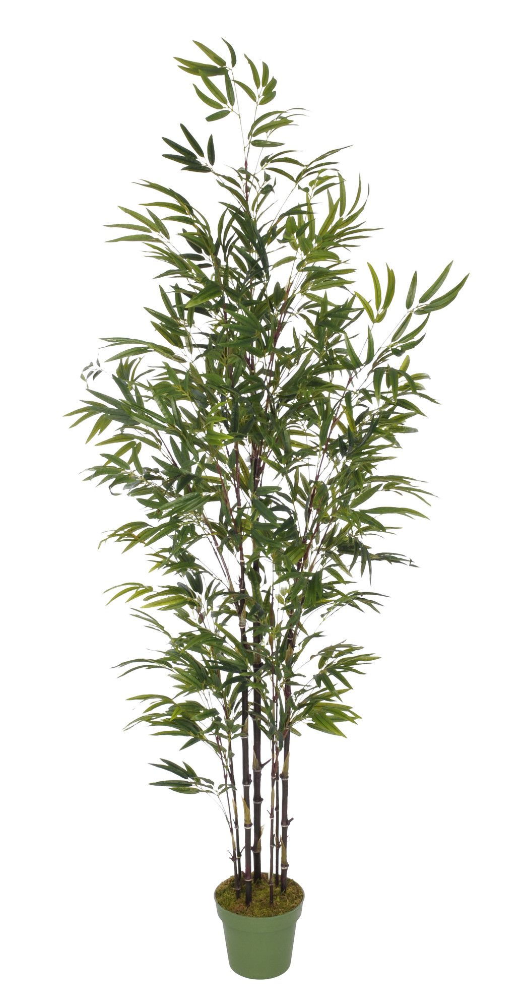 Faux Potted Bamboo Tree Products Pinterest