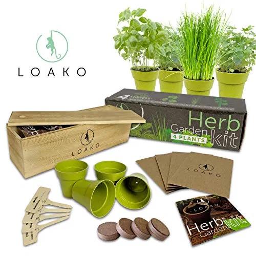 Nature's Blossom Herb Garden Seed Starter Kit. Grow 4
