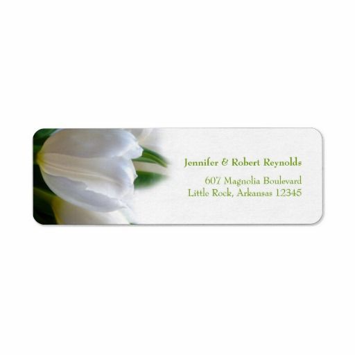 >>>Low Price          White Wedding Address Label           White Wedding Address Label We provide you all shopping site and all informations in our go to store link. You will see low prices onHow to          White Wedding Address Label Online Secure Check out Quick and Easy...Cleck Hot Deals >>> http://www.zazzle.com/white_wedding_address_label-106123025559795244?rf=238627982471231924&zbar=1&tc=terrest