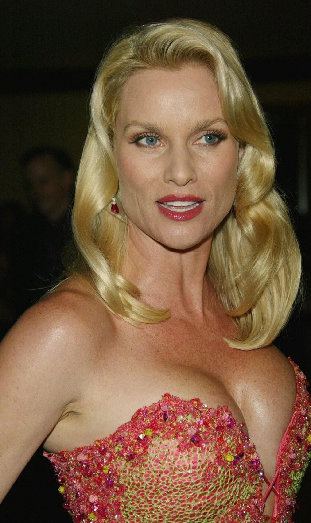 Celebrity Nicollette Sheridan nudes (74 images), Is a cute