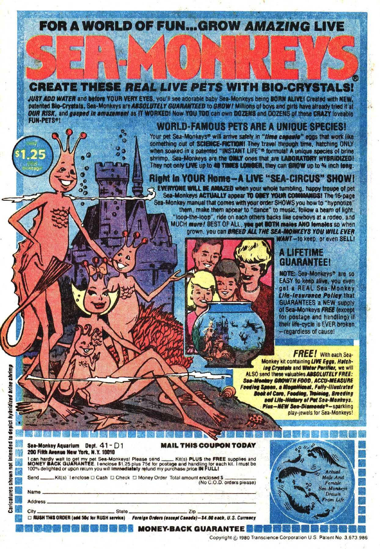 Sea Monkeys How Many Of Us Fell For This Saved Up Our Pennies