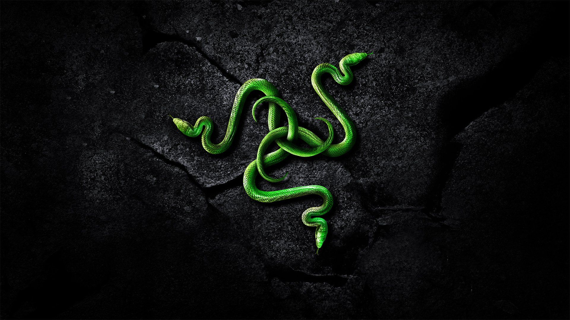 10 New Razer Wallpaper Hd 1080p Full Hd 1080p For Pc Background Wallpaper Backgrounds Black Phone Wallpaper Gaming Wallpapers
