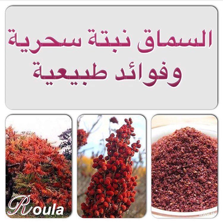 فوائد وأستعمالات السماق Herbalism Red Peppercorn Peppercorn