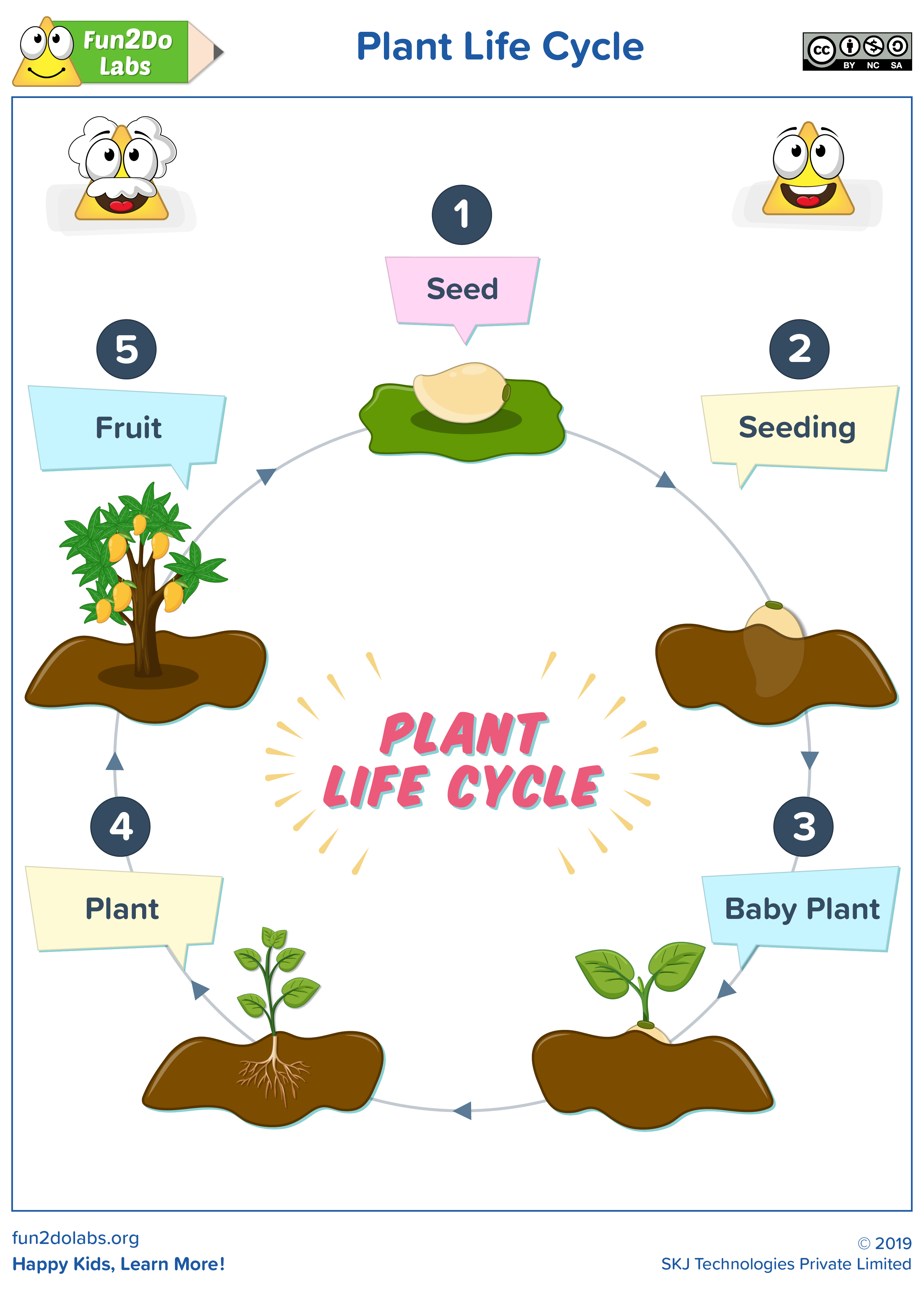 Plant Life Cycle Plant Life Cycle Cycle For Kids Flashcards For Kids [ 4062 x 2905 Pixel ]