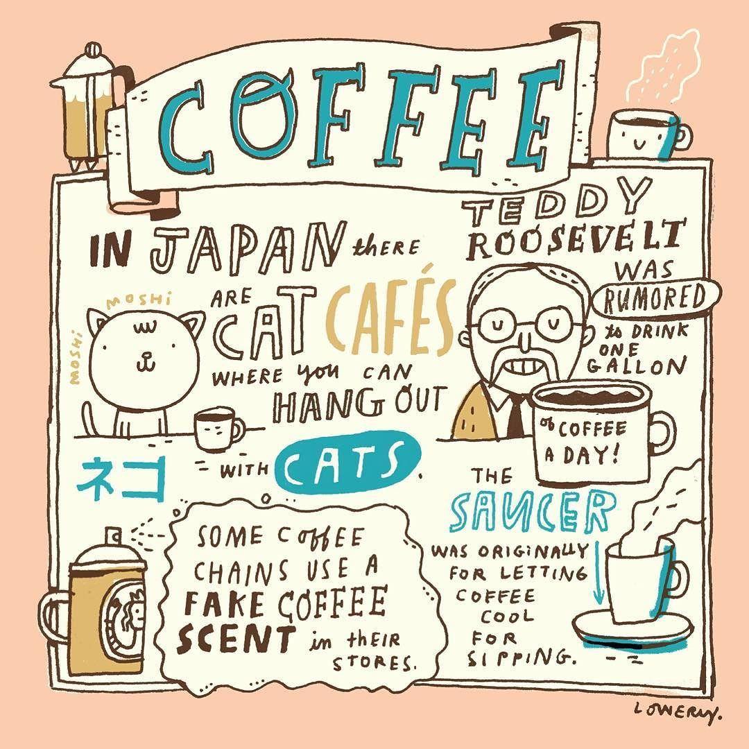 more coffee facts randomillustratedfacts sketchbook coffee by