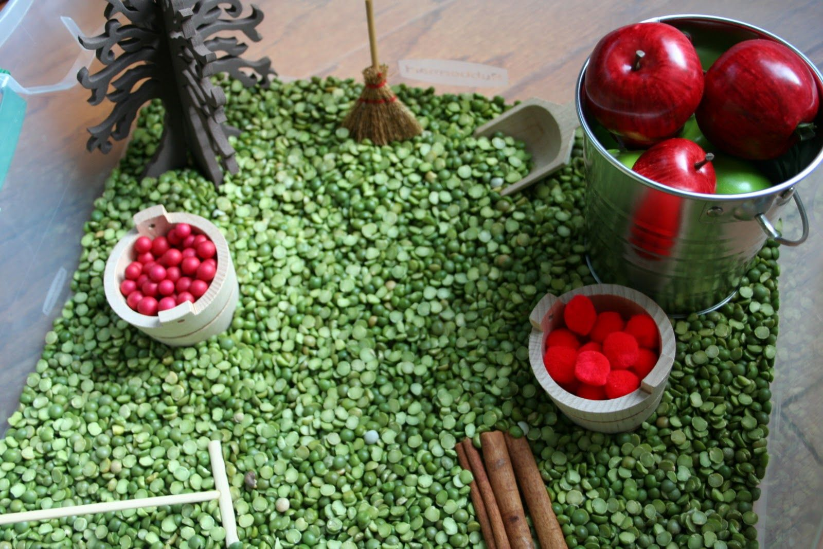 Apple Themed Sensory Bin W Split Peas