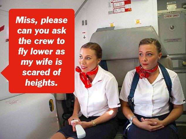 The stupidest questions passengers have asked flight attendants - air canada flight attendant sample resume