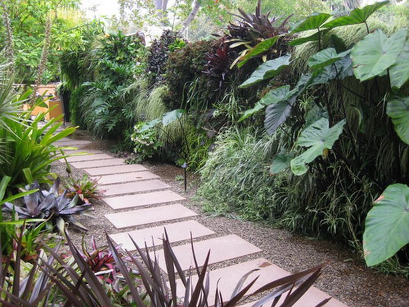Contemporary Tropical Side Gardening Patio Landscape Ideas Side Garden Side Yard Landscaping Modern Landscaping