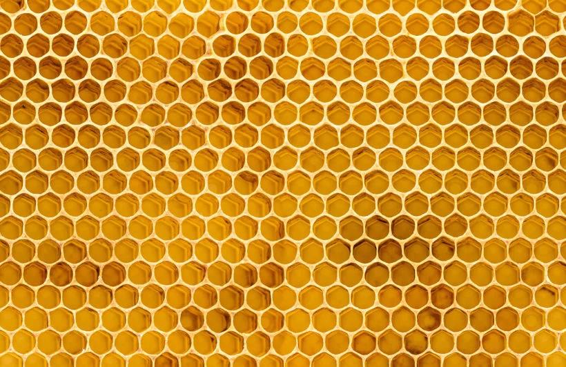 Honeycomb Texture Wallpaper Mural Plain Textured Wallpaper Mural Wallpaper Honeycomb