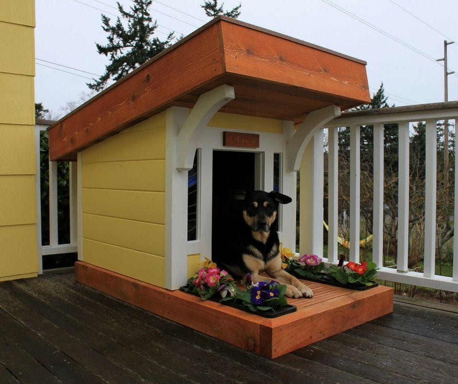 Unique Dog House Designs 8