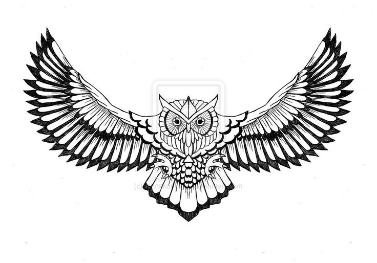 Owl Chest Tattoo Design By Lahnakuningas Deviantart Com On Deviantart Owl Tattoo Chest Owl Tattoo Design Owl Tattoo