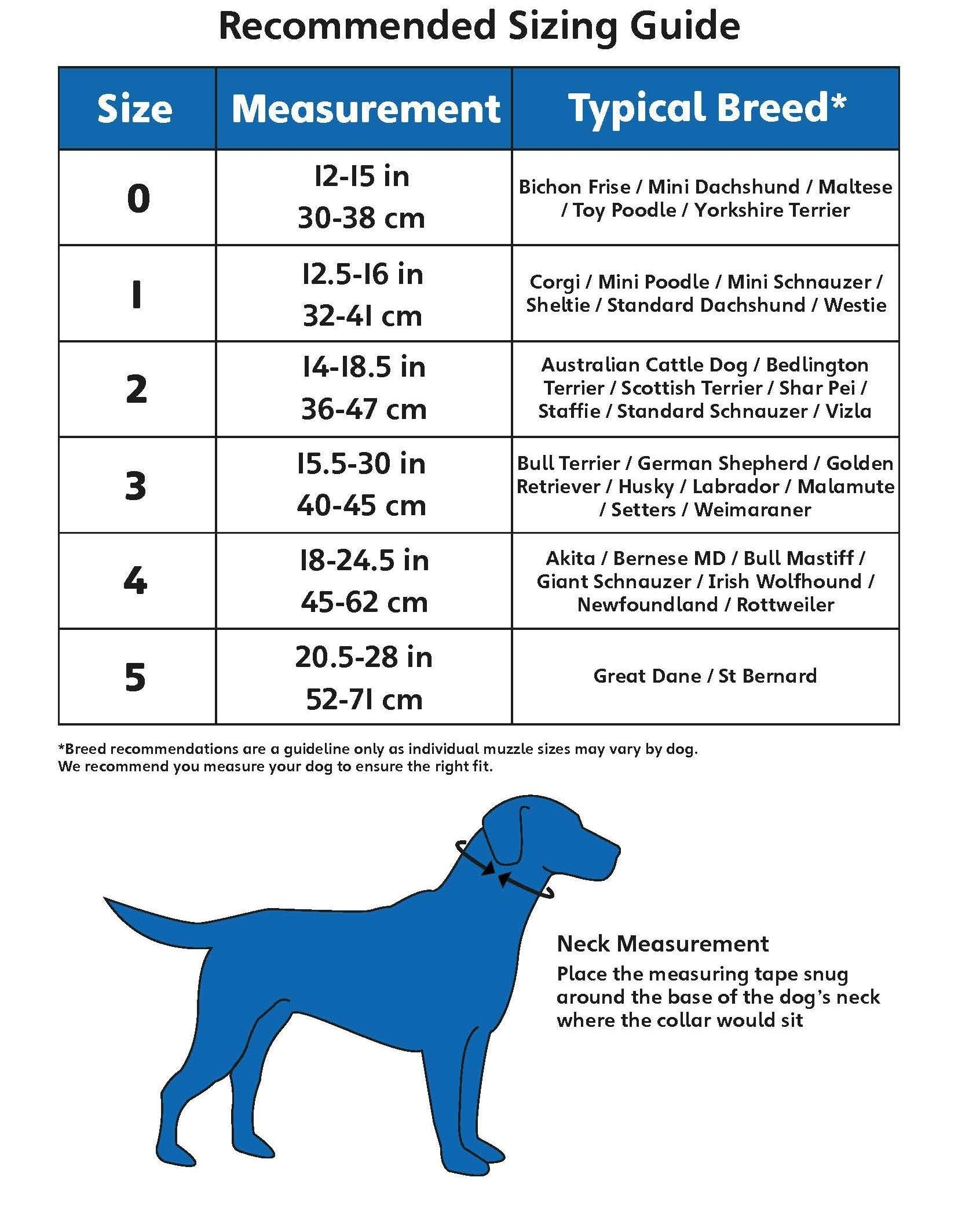 The Company Of Animals Halti Headcollar Adjustable And Padded No Pull Click On The Image For Additional Det Dogs Dog Training Obedience Large Dog Breeds