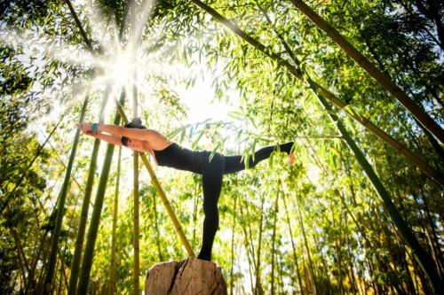 Yoga in the bamboo forest