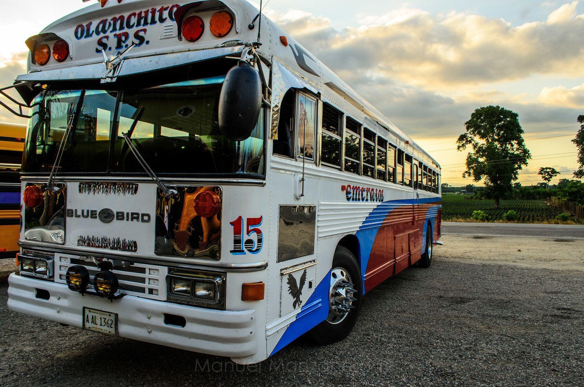 El Bus - San pedro Sula, #Honduras #sanpedrosula El Bus - San pedro Sula, #Honduras #sanpedrosula El Bus - San pedro Sula, #Honduras #sanpedrosula El Bus - San pedro Sula, #Honduras #sanpedrosula El Bus - San pedro Sula, #Honduras #sanpedrosula El Bus - San pedro Sula, #Honduras #sanpedrosula El Bus - San pedro Sula, #Honduras #sanpedrosula El Bus - San pedro Sula, #Honduras #sanpedrosula