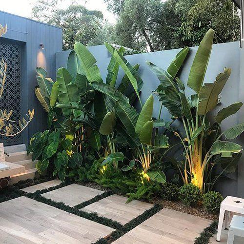 Photo of Tropische Stimmung ??. . # ard # bettergardenbiggerlife #cityscaper Installiere @mah … – Gartengestatung 2019