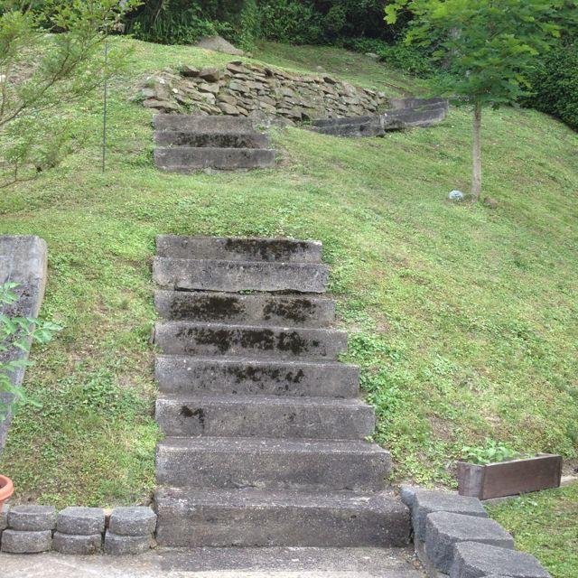 Pretty Steps. Montgomery WV.