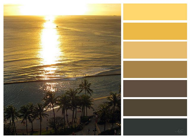gold sunset by ~~Angela, via Flickr    #colors #palettes #gold #yellow