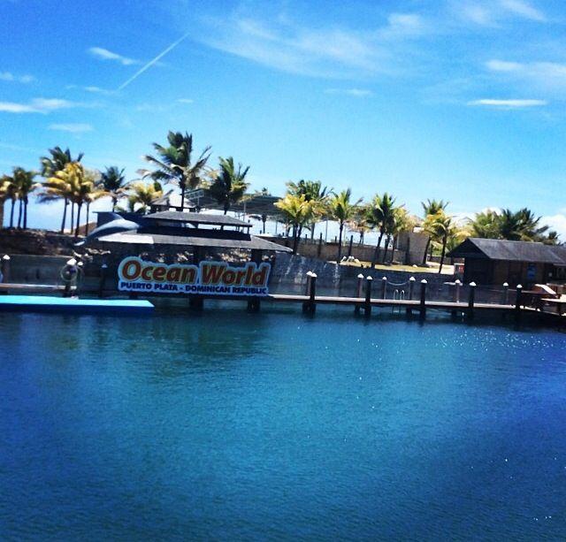 Dolphin Show Lagoon At Ocean World Puerto Plata Dominican Republic Puerto Plata Adventure Park Ocean