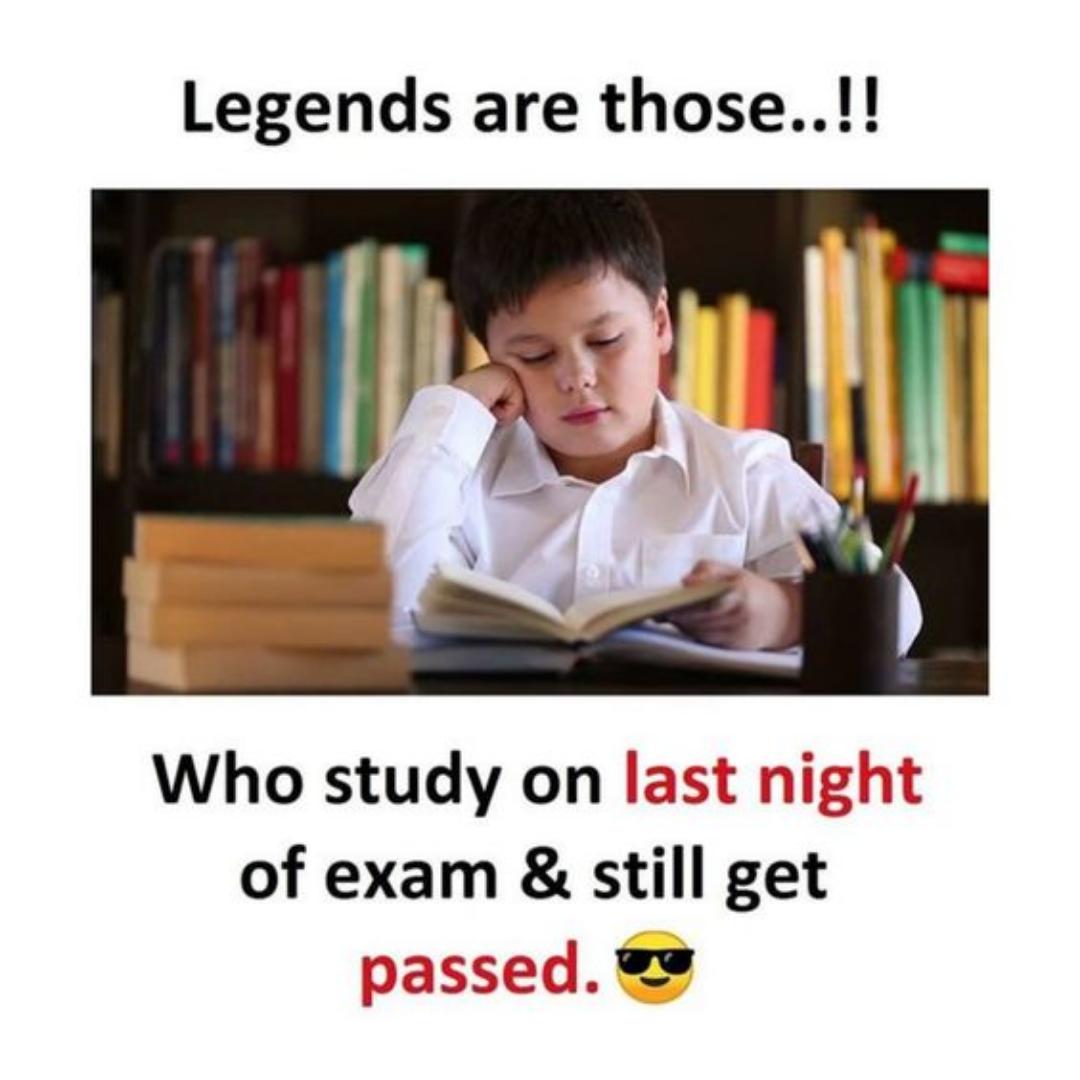 Essay Meme Fun Quotes Funny Exam Quotes Funny Exams Funny
