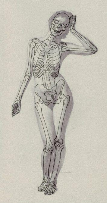 esqueleto femenino   dibujo   Pinterest   Esqueleto femenino ...