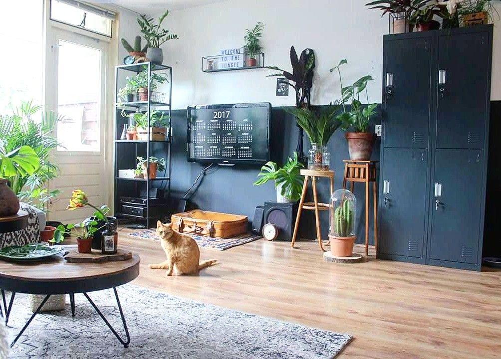 Urban jungle living room ideas boho plants deco vtwonen dark style