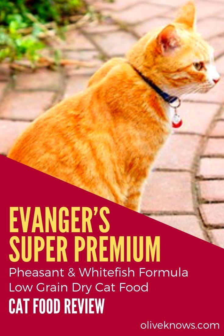 Evangers super premium pheasant whitefish formula low