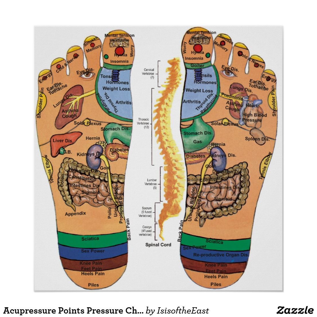 Acupressure Points Pressure Chart For The Feet Zazzle Com Acupressure Points Foot Reflexology Acupuncture Points Chart