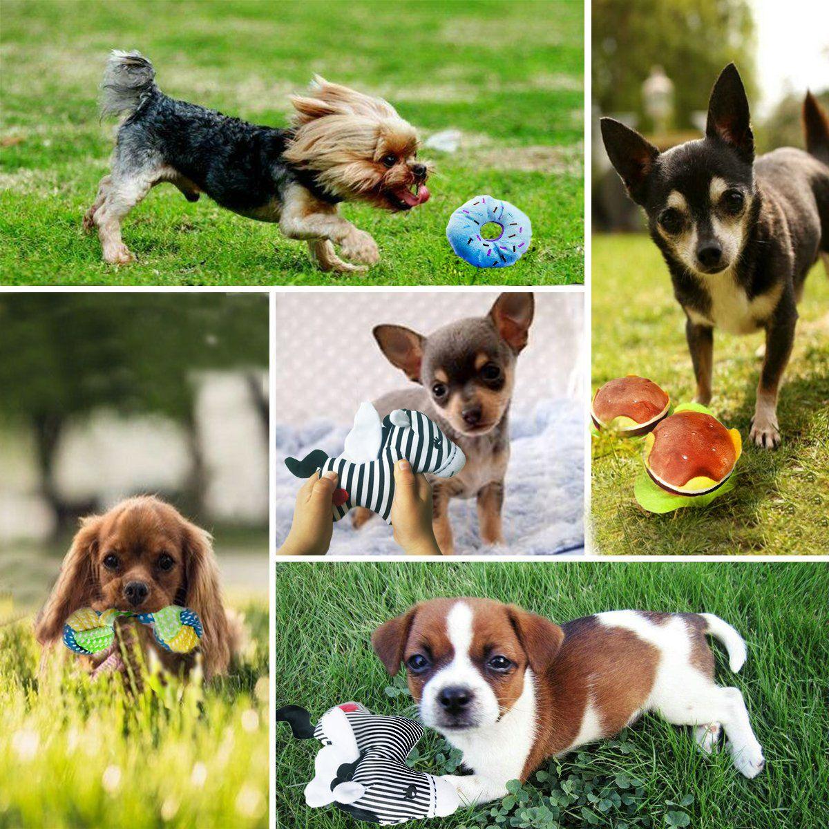 Buibiiu Dog Toys Dog Teething Toys Best Puppy Chew Toys Dog Chew Toys Squeaky Toys Balls Toys Teething Buibiiu Small Dog Toys Dog Toys Puppy Chew Toys
