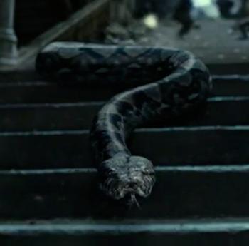 Nagini Nagini Harry Potter Slytherin Aesthetic Harry Potter Aesthetic
