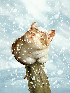 En la nieve. Con movimiento cliqueá en la imagen.